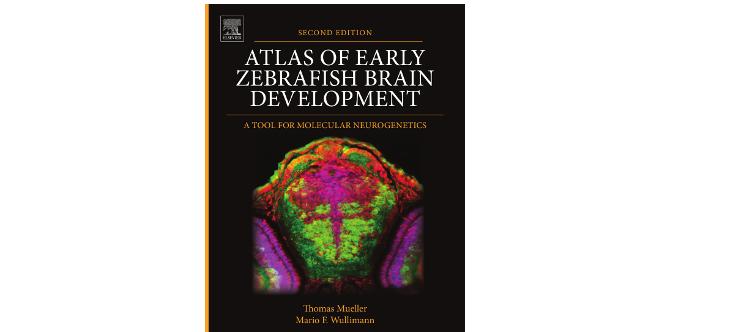 atlas_zebrafish
